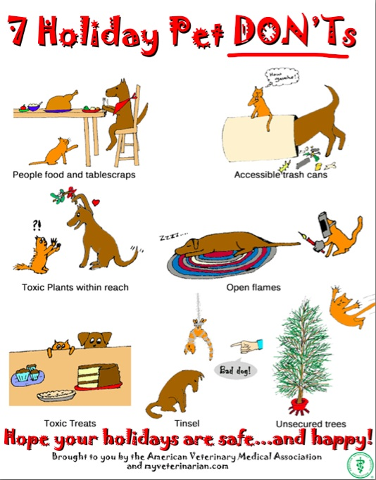 Image result for holiday pet safety checklist